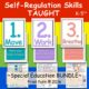 Self Regulation Skills Curriculum