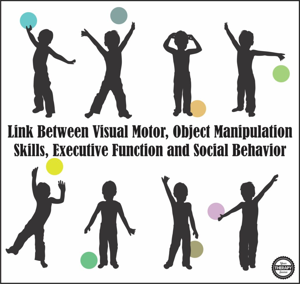 Link Between Visual Motor, Object Manipulation Skills, Executive Function and Social Behavior