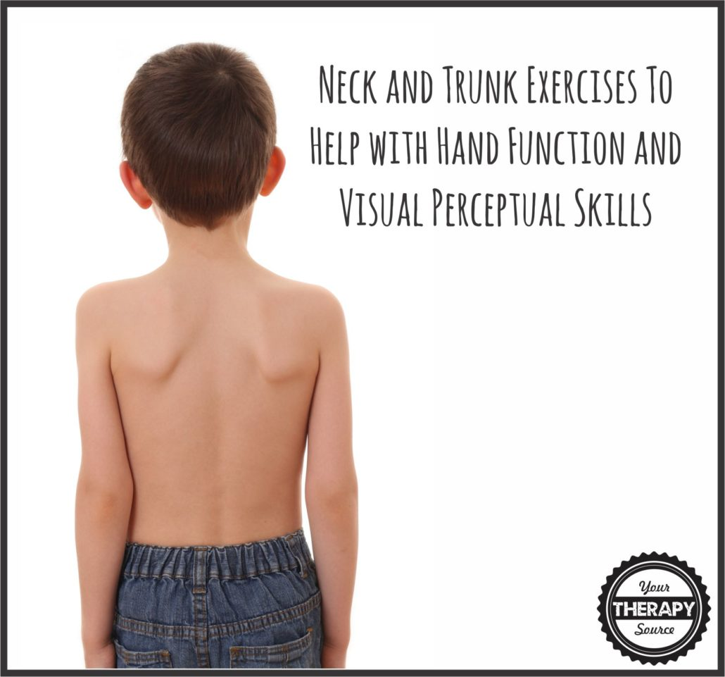 neck-and-trunk-exercises-help-with-hand-function-and-visual-perceptual-skills