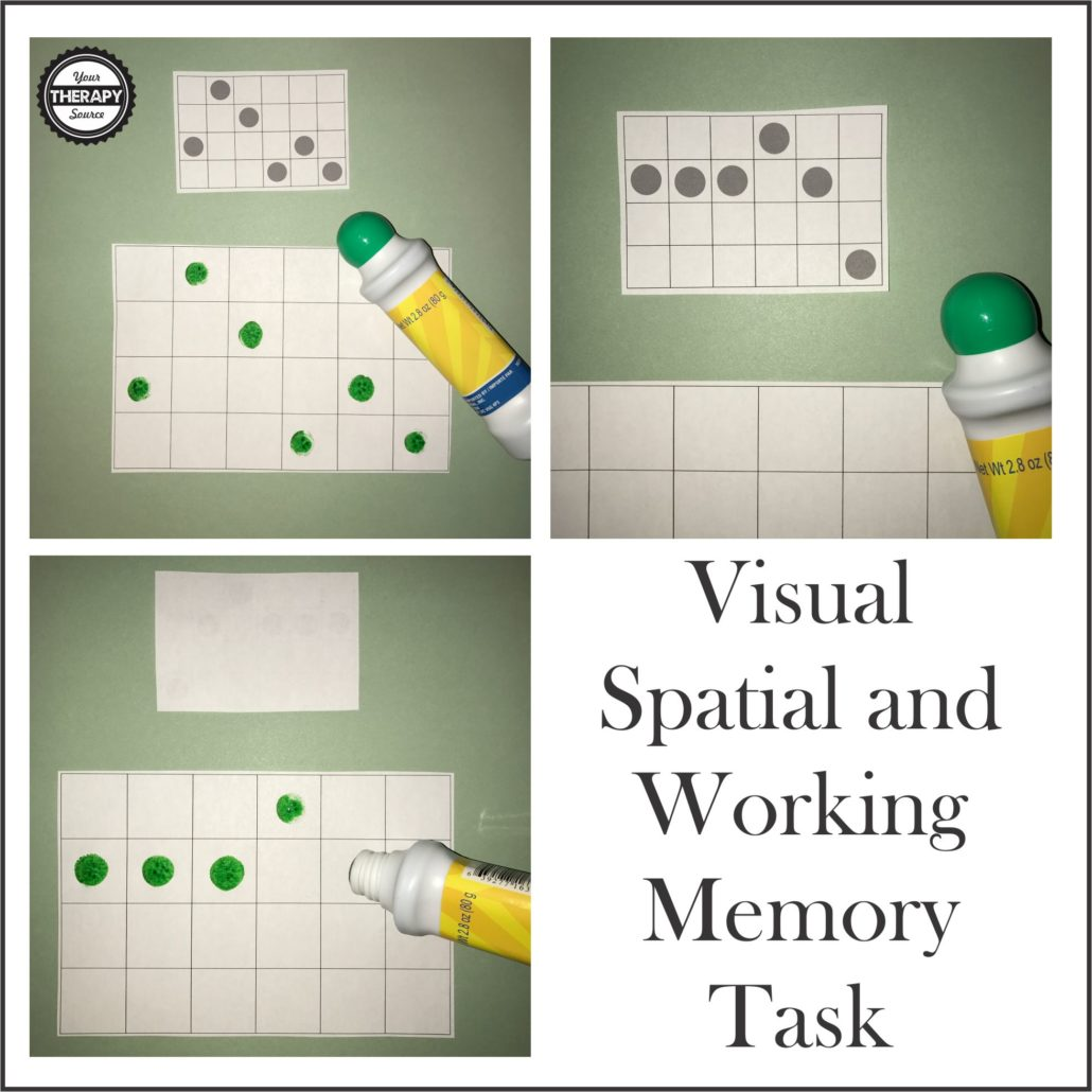 Visual Spatial Working Memory Task