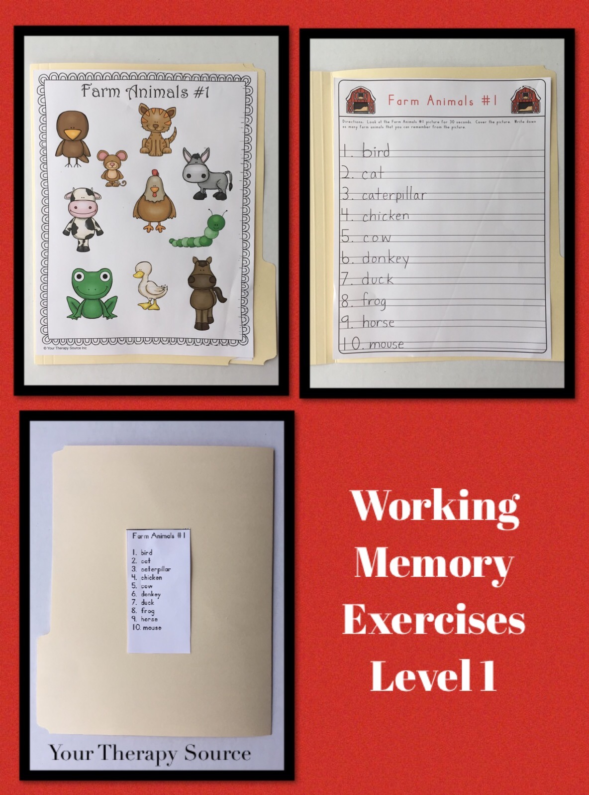working memory level 1 freebie from https://yourtherapysource.com/workingmemory.html