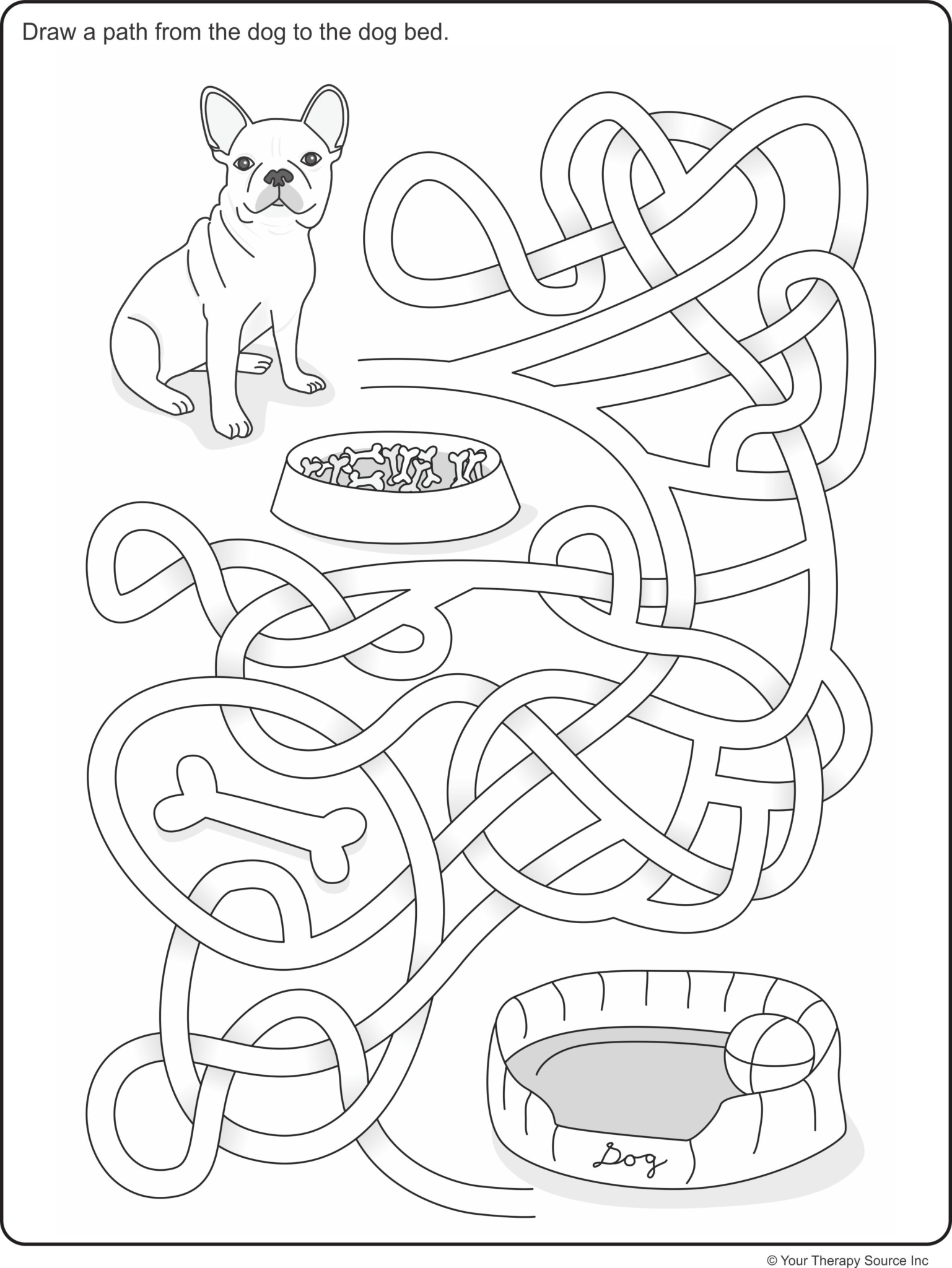 Visual Spatial Dog Maze