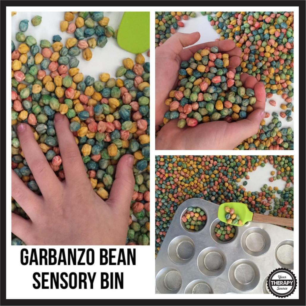 Garbanzo Bean Sensory Bin