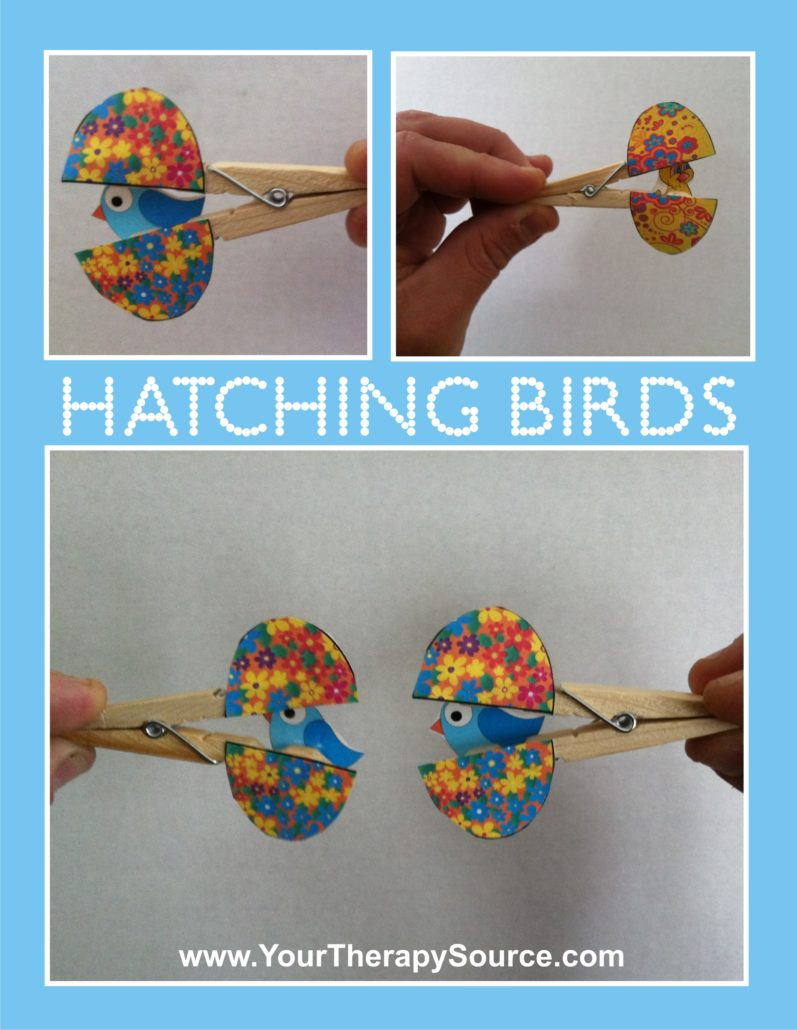 Hatching Birds