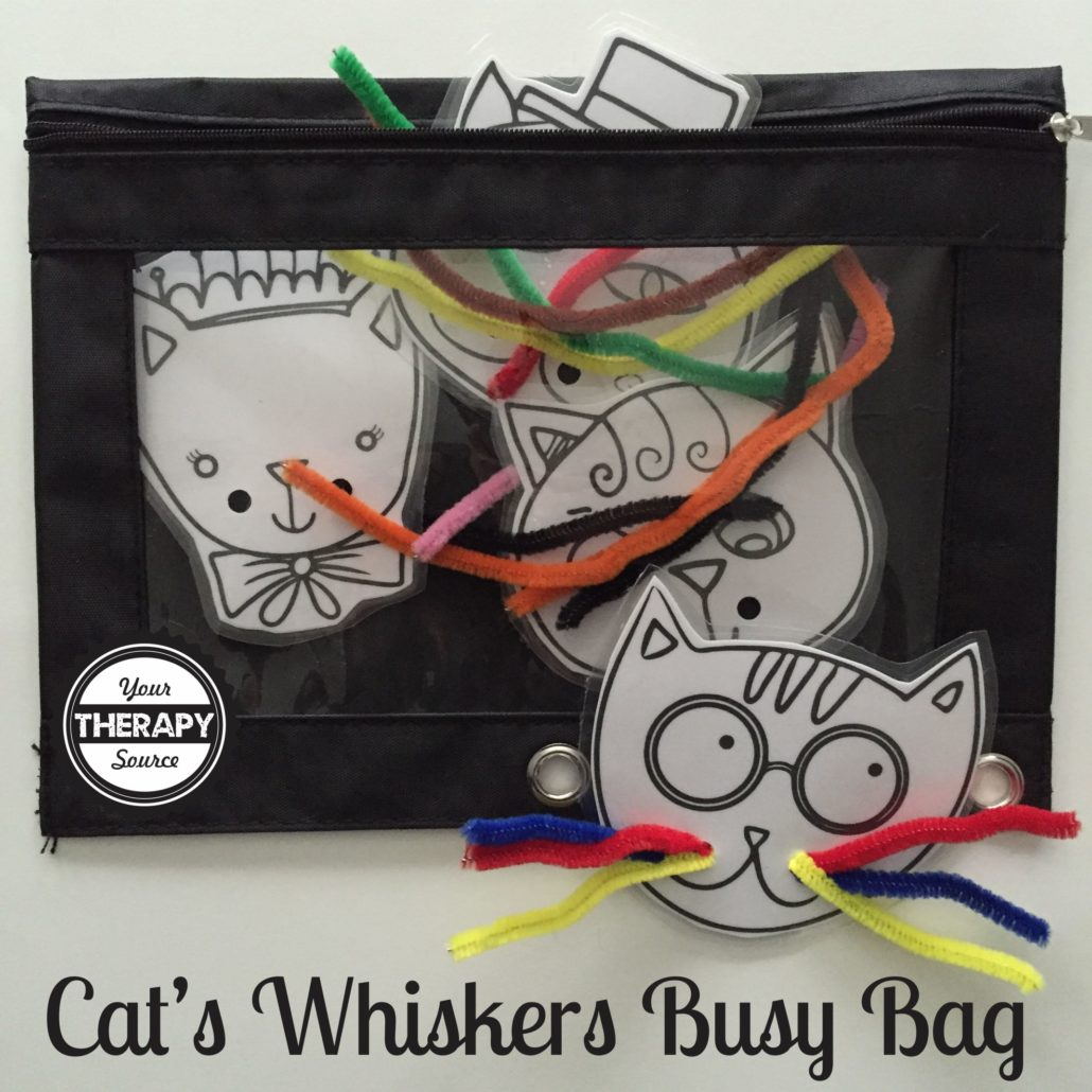 cat whiskers busy bag