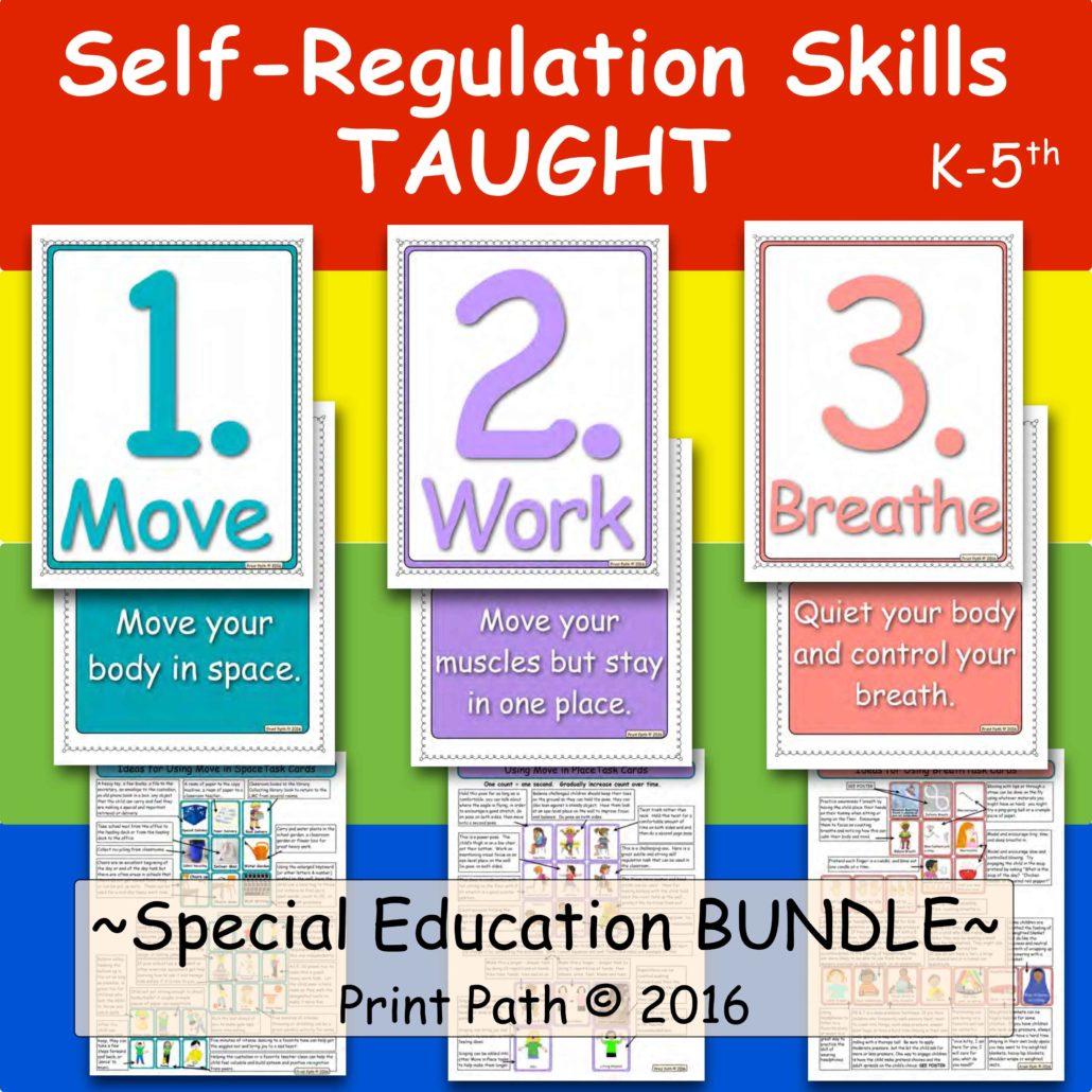 Self REgulation Skills Curriculum
