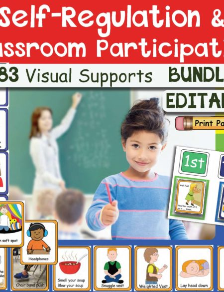 Visual Supports for Self Regulation and Classroom Participation