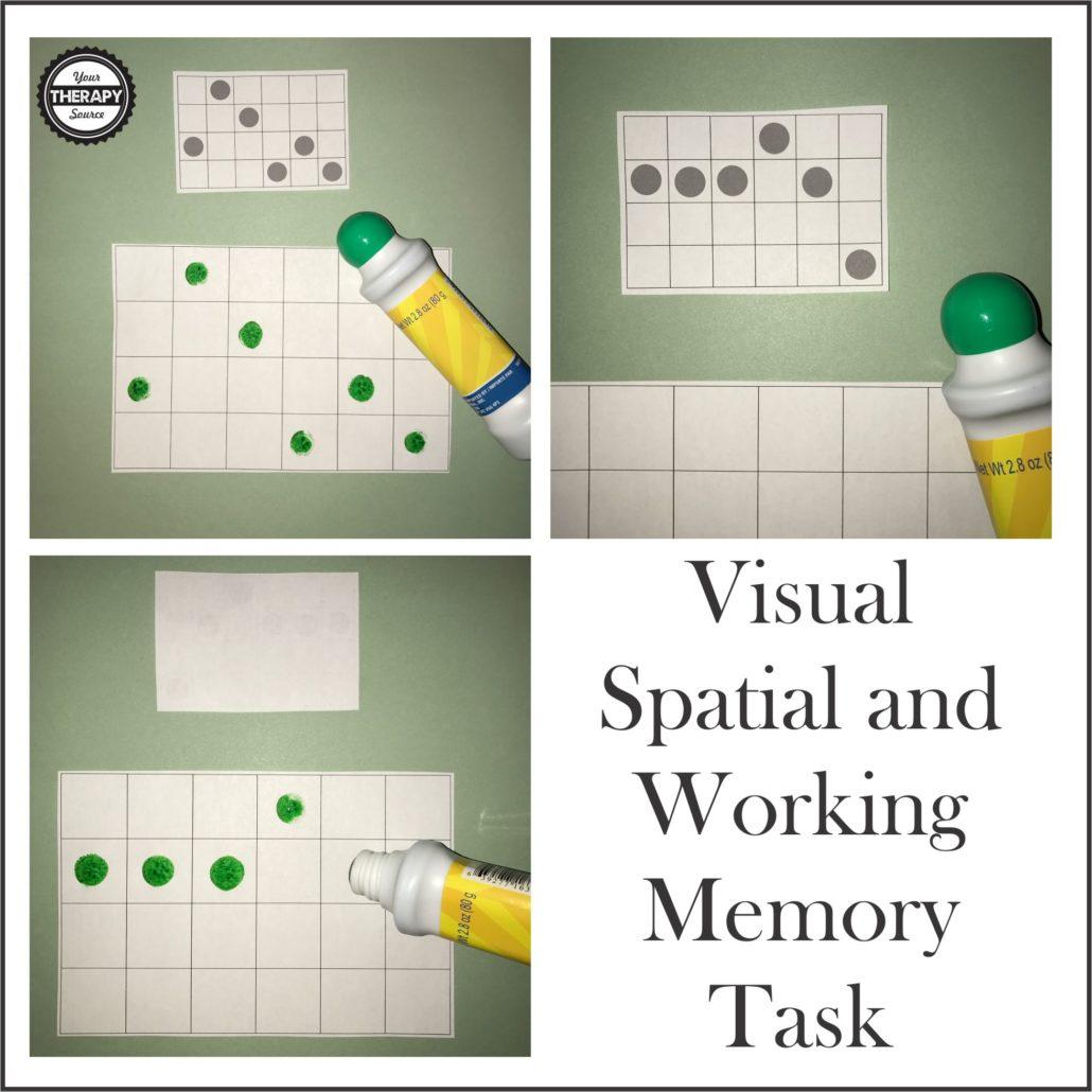 Visual Spatial Working Memory Task