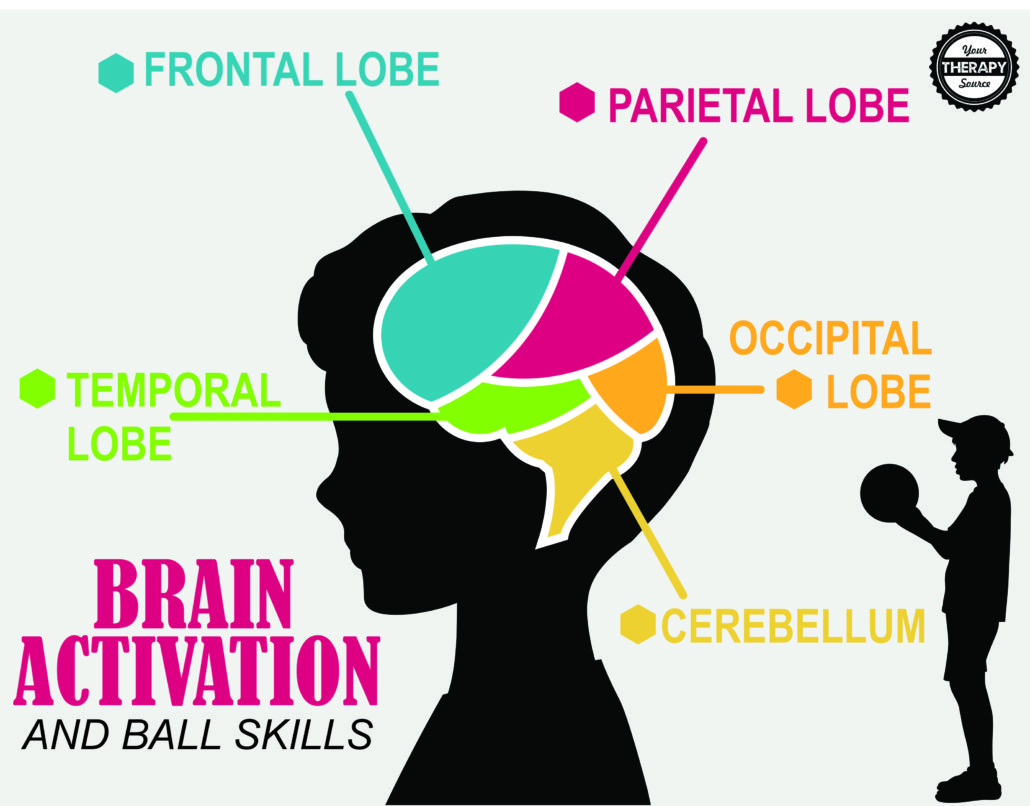 Brain Activation and Coordination