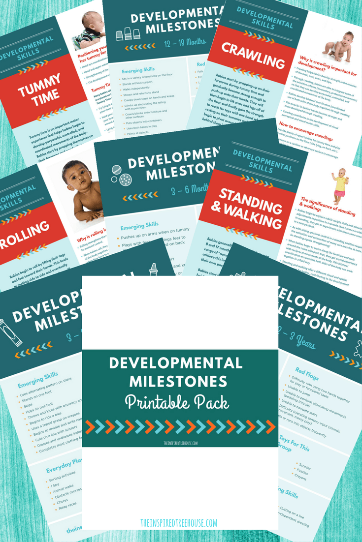 Developmental Milestones Handout Pack
