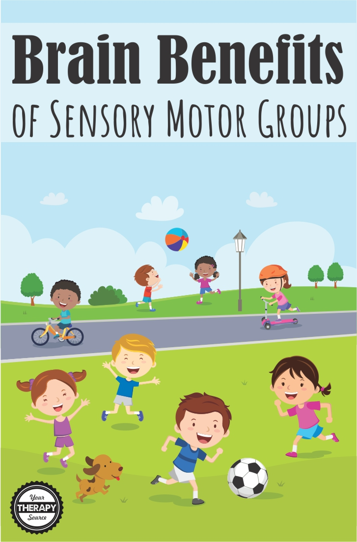 Brain Benefits of Sensory Motor Groups