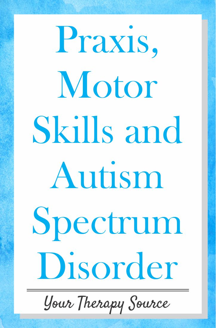 Praxis, Motor Skills, and Autism