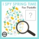 Check out this I Spy Spring Time Egg puzzle freebie to challenge your students' visual perceptual skills from Your Therapy Source.