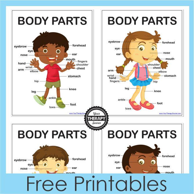 6 Body Awareness Activities and Printables - FREE from Your Therapy Source for kids to learn about body awareness and other skills.