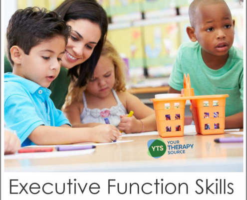 Recent research took a closer look at how you can help develop executive functioning in preschool. Read more at YourTherapySource.com